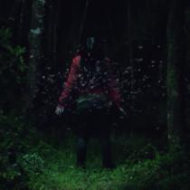 Cartelera urbana: Gritos del Bosque, el filme de terror en una historia mapuche