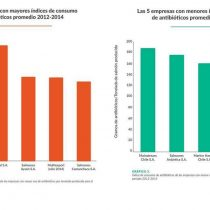 La primera radiografía al uso de antibióticos que deja al desnudo a la industria salmonera chilena
