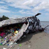 Greenpeace pide eliminar urgente las bolsas plásticas en todo Chile