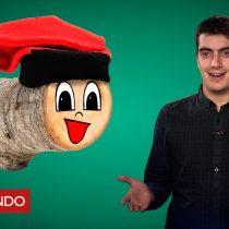 [VIDEO] ¿En qué consiste y de dónde viene la curiosa tradición en Cataluña de pegar a un tronco el día de Navidad?