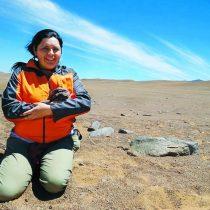 Millarca Valenzuela: la única geóloga del país que estudia meteoritos