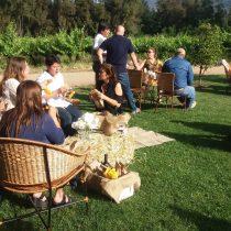 Programa de Sernatur impulsa productos turísticos innovadores en el Valle de Colchagua
