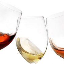 Abiertas las inscripciones para el primer encuentro virtual e internacional sobre la innovación en la industria del vino
