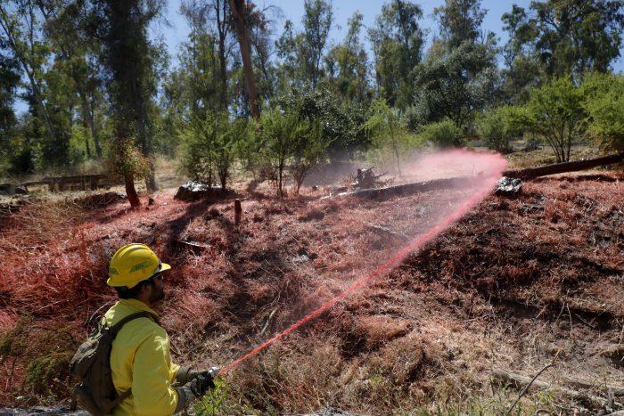 Alerta en ocho regiones por incendios forestales