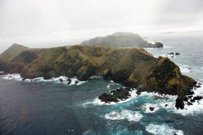 Con la creación de dos nuevos parques marinos Chile fija el estándar global en materia de protección de la biodiversidad
