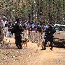 Brigadas caninas se suman a la búsqueda de niña presuntamente secuestrada en Licantén