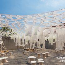 Exposición premiada por el MoMA llega por primera vez a Chile