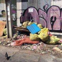 Acudirá a los tribunales: Jadue denunciará a empresa de áreas verdes de Maipú por tirar escombros en Recoleta