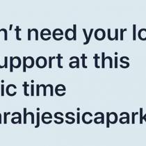 """Kim Cattrall más dura que nunca: """"Sarah Jessica Parker, no necesito tu apoyo en este trágico momento"""""""