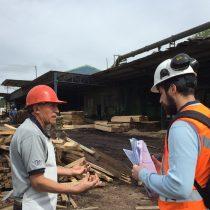 Casi 100 millones de pesos en multas aplicó la Direción del Trabajo a la industria forestal
