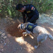 GOPE confirma hallazgo de heces humanas y restos de comida en el sector donde habría sido secuestrada Emmelyn