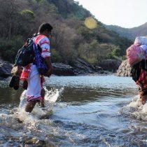 México, Colombia y Brasil, puntos negros para activistas