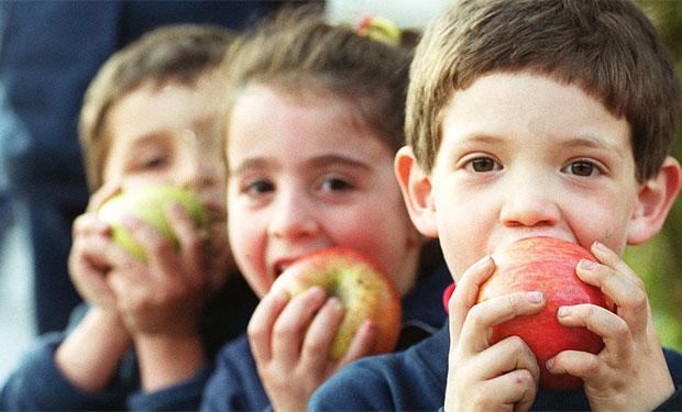 Colaciones saludables para el colegio: Lo que debemos considerar y opciones para cada día