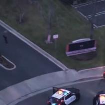 [VIDEO] Delincuente es detenido tras ser tackleado por perro policial