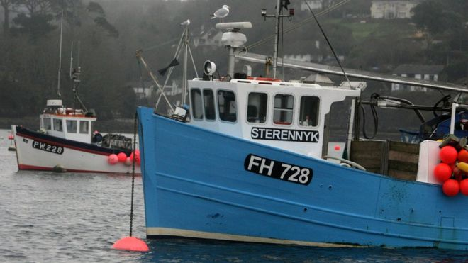 Estado de las pesquerías: el informe que desinforma