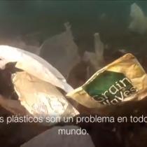[VIDEO] La ingeniosa solución noruega para acabar con la basura plástica en los océanos