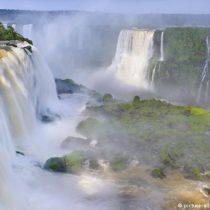 América Latina: la riqueza de su biodiversidad en peligro