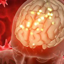 Científico chileno asegura que cerebro comanda nuestras acciones sin pedir permiso