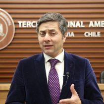 """Daniel Guevara, presidente del Primer Tribunal Ambiental: """"Si no hubiera un sistema de frenos entre el Estado, bastaría con la decisión del Comité de Ministros"""""""