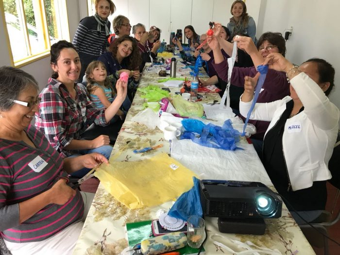 Emprendedoras se convierten en principal motor para solucionar problemas medioambientales en el sur de Chile