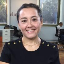 Comentario - Una Mujer Fantástica: el triunfo de la cultura que se convierte en presión para Piñera