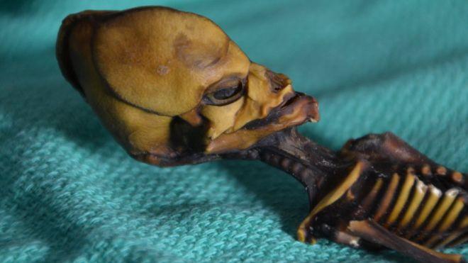 La trágica historia detrás de la momia hallada en Atacama que algunos creían era un extraterrestre