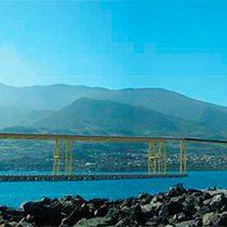 Cruz Grande: el proyecto portuario de CAP que se ha beneficiado de la demonización de Dominga