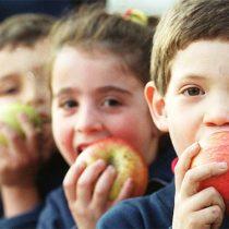 Estudios del INTA confirman cómo los alimentos altos en grasas y azúcares afectan el desarrollo cognitivo de los niños