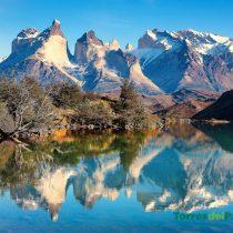 Conservación de la biodiversidad: una gran oportunidad para Chile