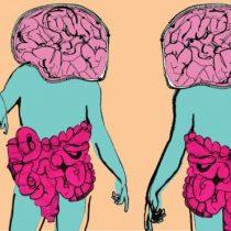 Cómo las bacterias están cambiando todo el tiempo tu estado de ánimo