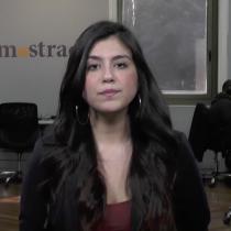La estrategia de Piñera que anula la salida política al conflicto mapuche