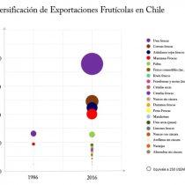 El gran salto exportador de frutas de Chile en los últimos 20 años
