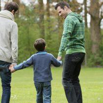 Organizaciones piden al Gobierno permitir adopción homoparental