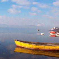 La complicidad gubernamental en la destrucción serial del mar de Chiloé