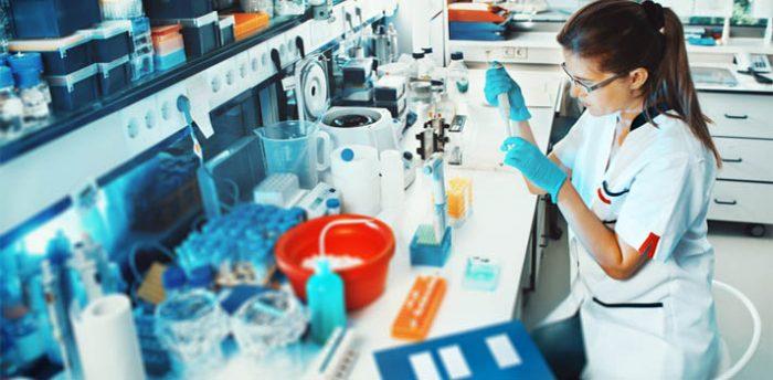 Ley de cuotas de mujeres como política científica para entrar en la economía del conocimiento