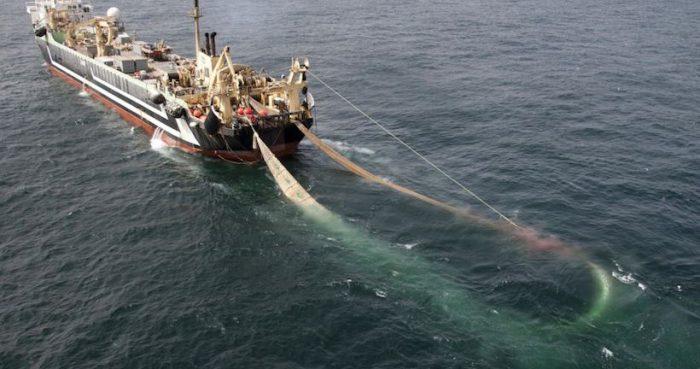 Comisión de pesca del Senado por proyecto del Gobierno: