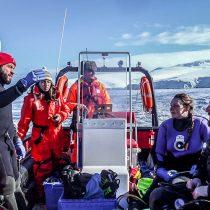 Científicos del Instituto Antártico Chileno identifican a las especies del fondo marino como