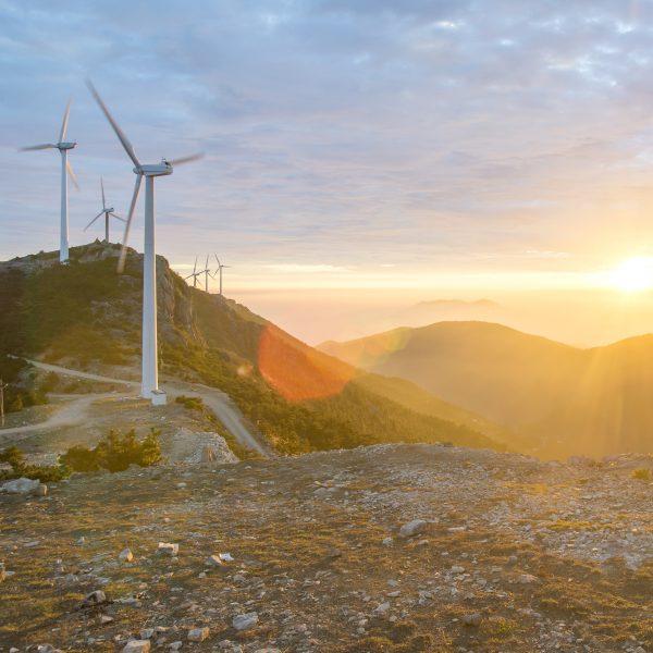 Plan de economía verde para sanar Chile