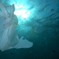 """Greanpeace revela que se ha descubierto plástico en el punto más profundo del océano: """"Estamos cerca de un punto sin retorno"""""""