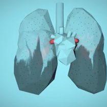 Cómo la contaminación del aire afecta a tu cuerpo