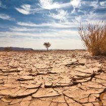 Informe de la ONU advierte que Chile es uno de los países más afectados por la desertificación
