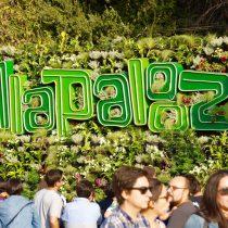 Campaña de reforestación recaudó $25 millones en Lollapalooza