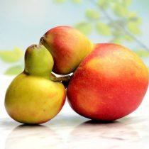 Cómo el juicio estético en frutas y verduras contribuye al desperdicio de alimentos