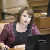 Diputada Hernando es grabada participando de sesión parlamentaria mientras conducía un automóvil
