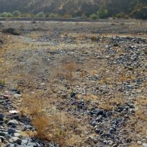 El robo de agua en Petorca: ¿quién es el que realmente daña más al país?