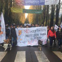 """Dirigentas de la Confech solicitan permiso en la Intendencia para marchar en contra """"la violencia machista"""""""