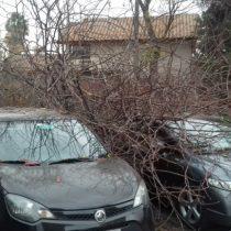 Desde alerta roja en Los Ángeles hasta fuertes vientos en Región Metropolitana marcan este lunes