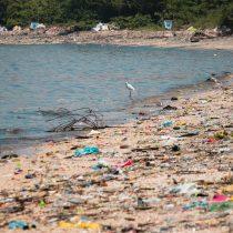 """Greenpeace: """"La gran batalla que hoy enfrenta la humanidad es poder derrotar al plástico"""""""