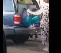 Indignante: mujer trasladaba a niños en jaulas para perros