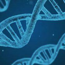 Científico español preocupado por modificación genética con fines